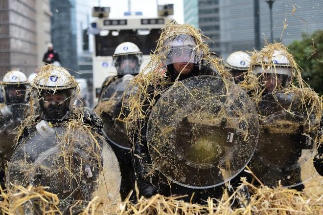 Embargo russe : les agriculteurs protestent à Bruxelles