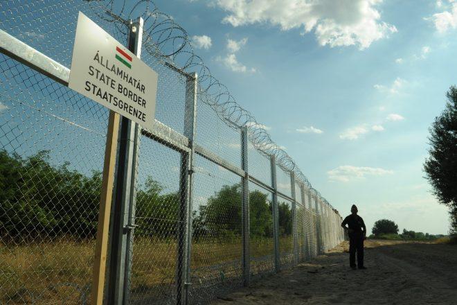 Steinmeier defends Hungary's EU seat