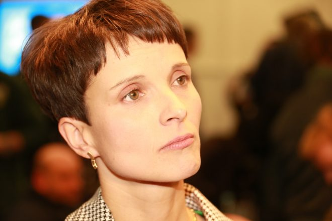 Petry quits right-wing AfD