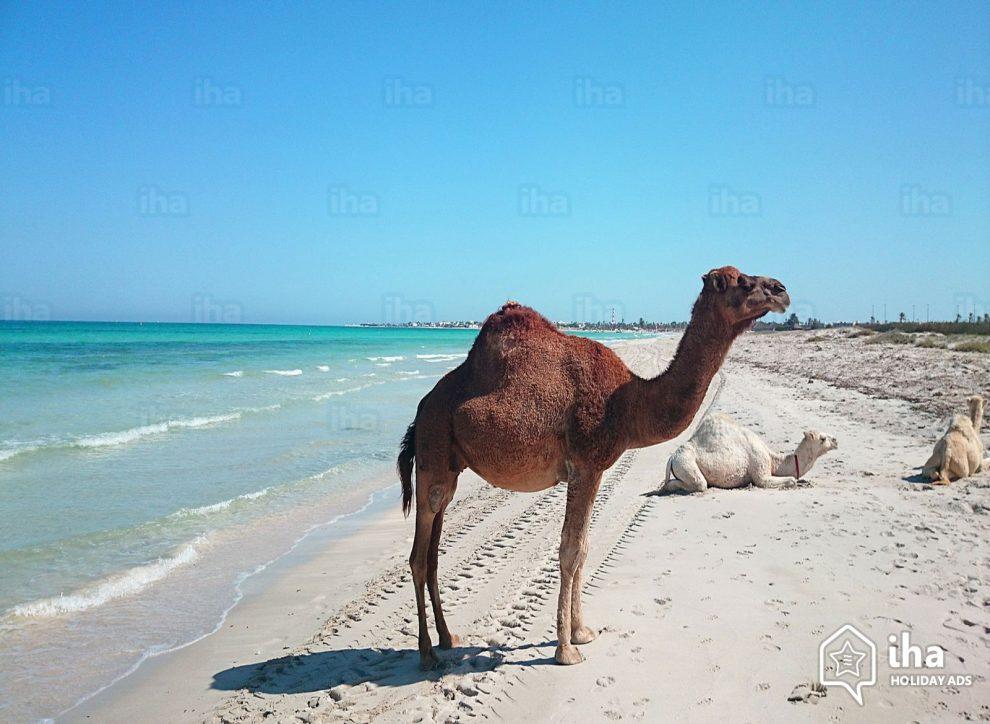'Racist' boat denied Tunisia supplies