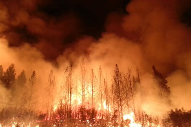 Unseasonal forest fires ravage Europe