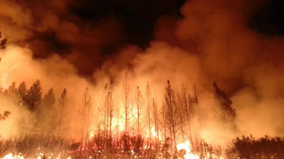 Unseasonal forest fires ravage Europe