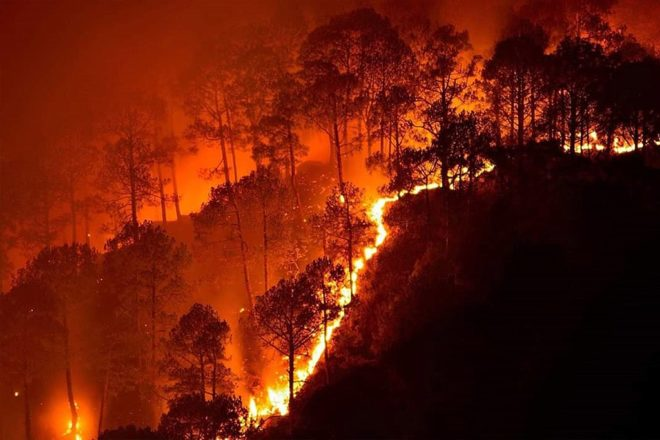 EU looks to block trade deal over Brazil fires