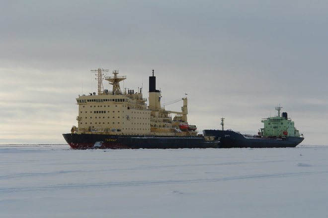 Russia risks Arctic species to exploit coal reserves